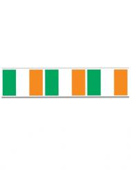 Flaggen-Girlande Saint Patrick